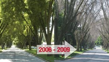 2006-2009